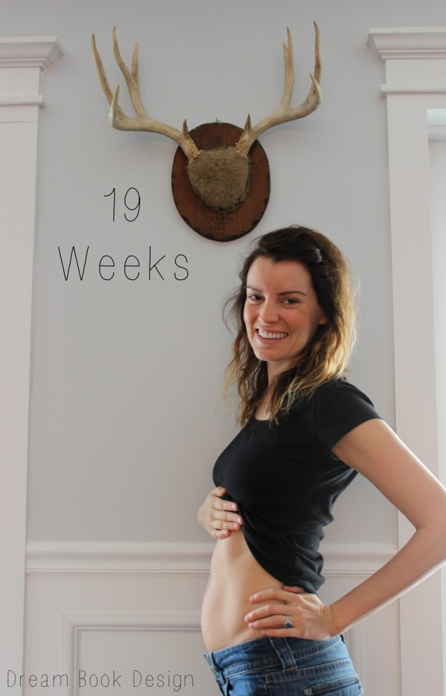 19weekspregnantbelly
