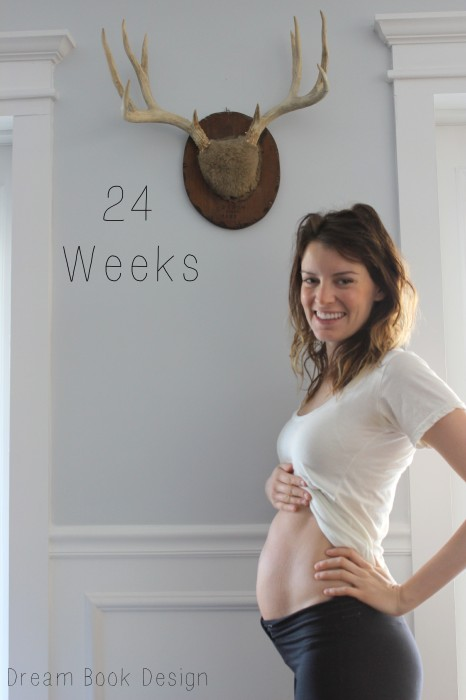 24 weeks pregnant belly