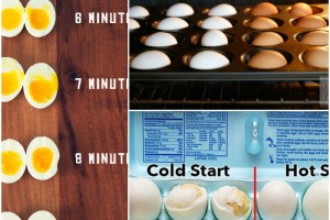 Top 4 Ways To Hard Boil An Egg