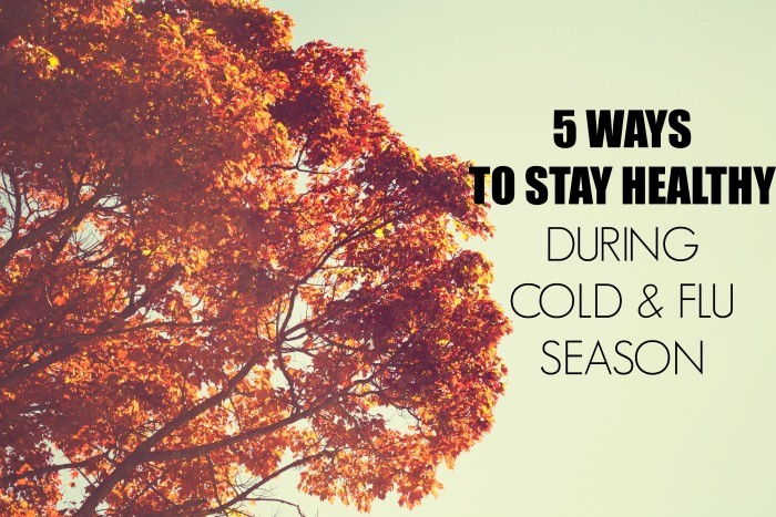 Stay healthy during cold and flu season  dreambookdesign.com