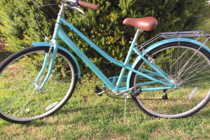 Schwinn Carrington Bike Giveaway
