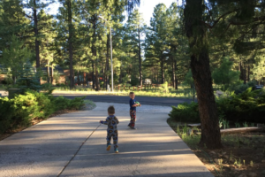 Guide To A Summer In Flagstaff